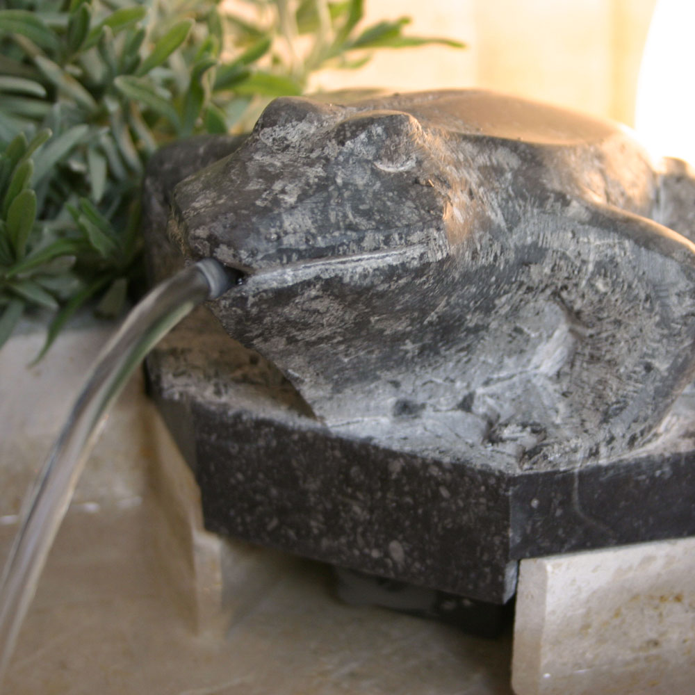 Zimmerbrunnen Frosch